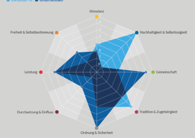 Cultural-Fit-Evalueator-Spinnendiagramm