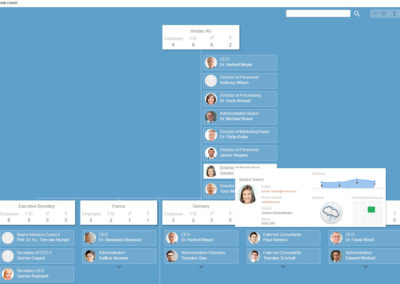 Ingentis org.manager FTE & headcount visualization