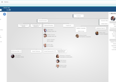 Struktur im Ingentis orgmanager [web] for SAP SuccessFactors