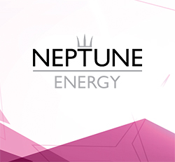 Ingentis org.manager Success Story: Easy modeling of alternative organizational structures at Neptune
